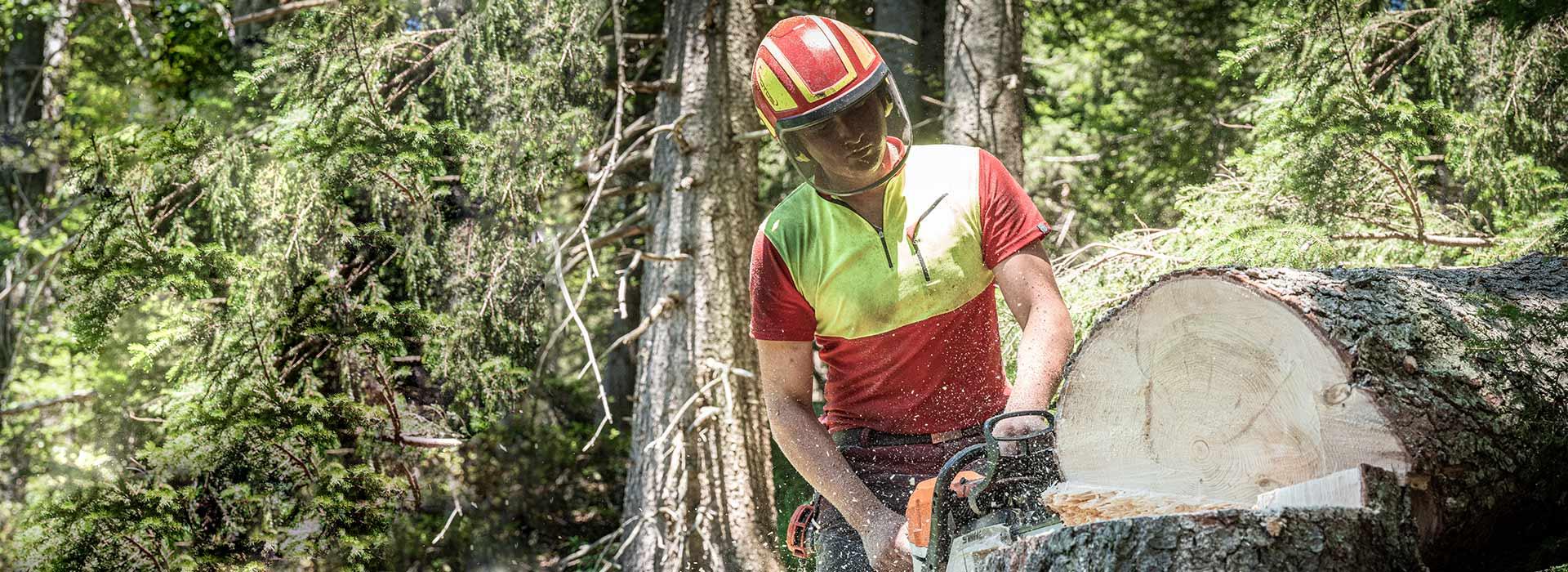 Glueck-Baumfaellung_Salzburg - Holzfäller, Holzfällung Holzschlägerungen Rodung und Entsorgung von Bäumen in Salzburg