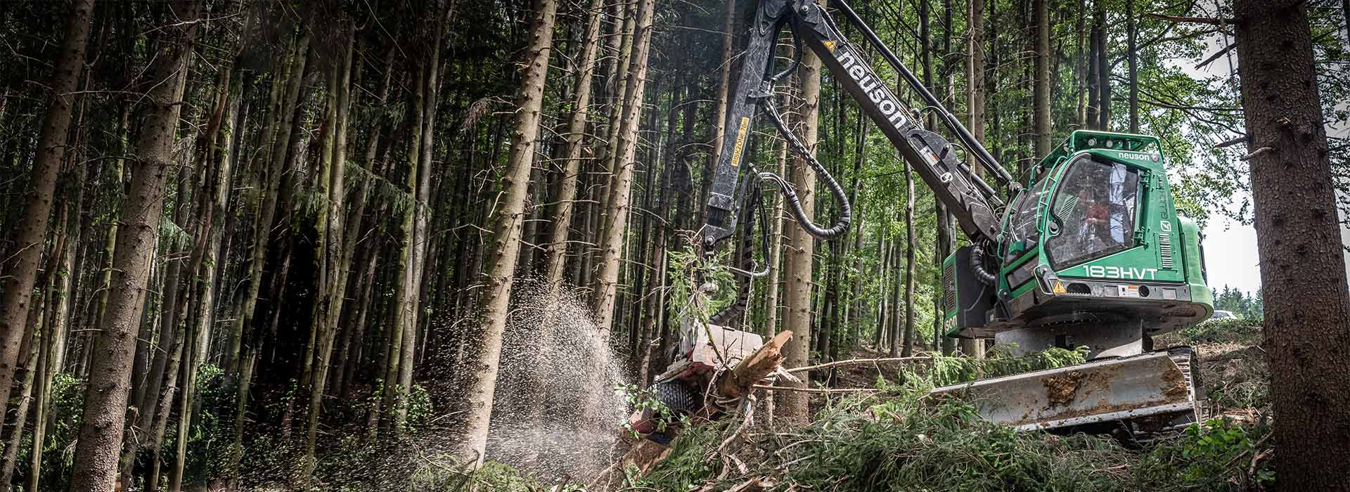 holzernte - Holzschlägerungsunternehmen Salzburg Glück Forstservice - Holz Glück